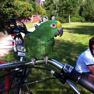Lora auf dem Fahrrad